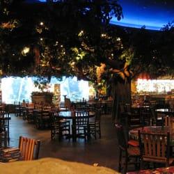 Rainforest Cafe Order Food Online 664 Photos 618 Reviews