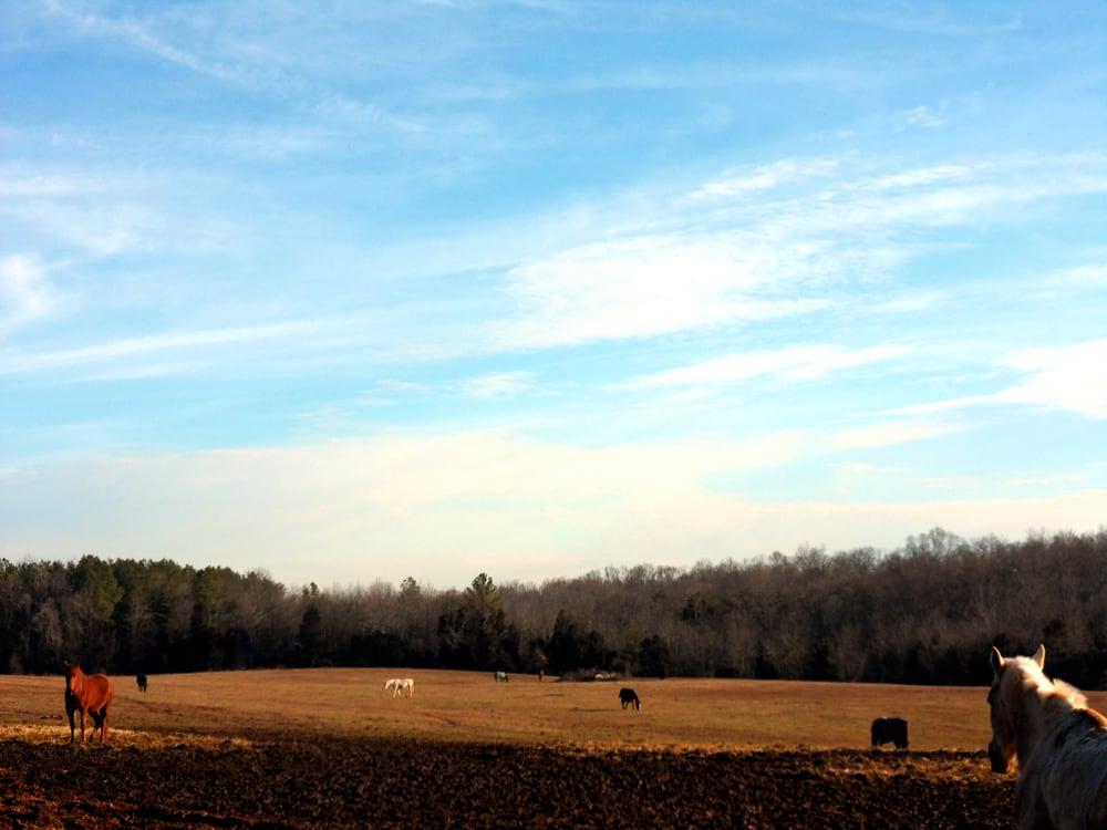 Croney's Corner Farm: 41418 John Mosby Hwy, Aldie, VA