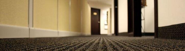 Custom Solutions Carpet Care, LLC.: Lynnwood, WA