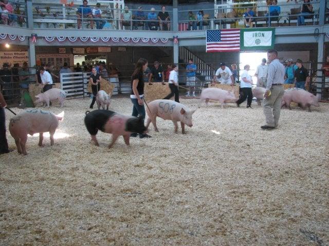 Iron County Fair: N 7th Ave, Iron River, MI