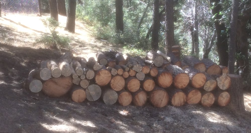 Fire Risk Management: Big Bear, CA