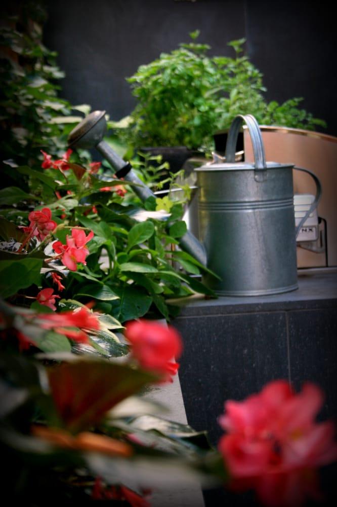 Stems Garden Design & Maintenance: 1321 West Nevada Pl, Denver, CO