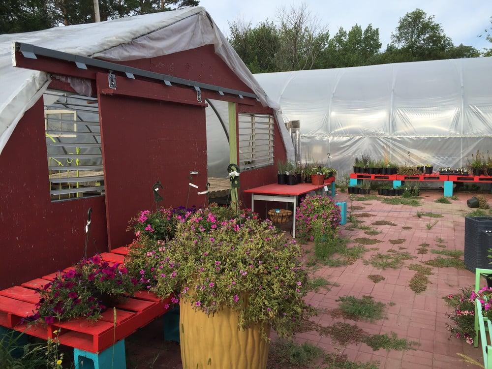 Kenmare Garden Center: RR 1, Kenmare, ND