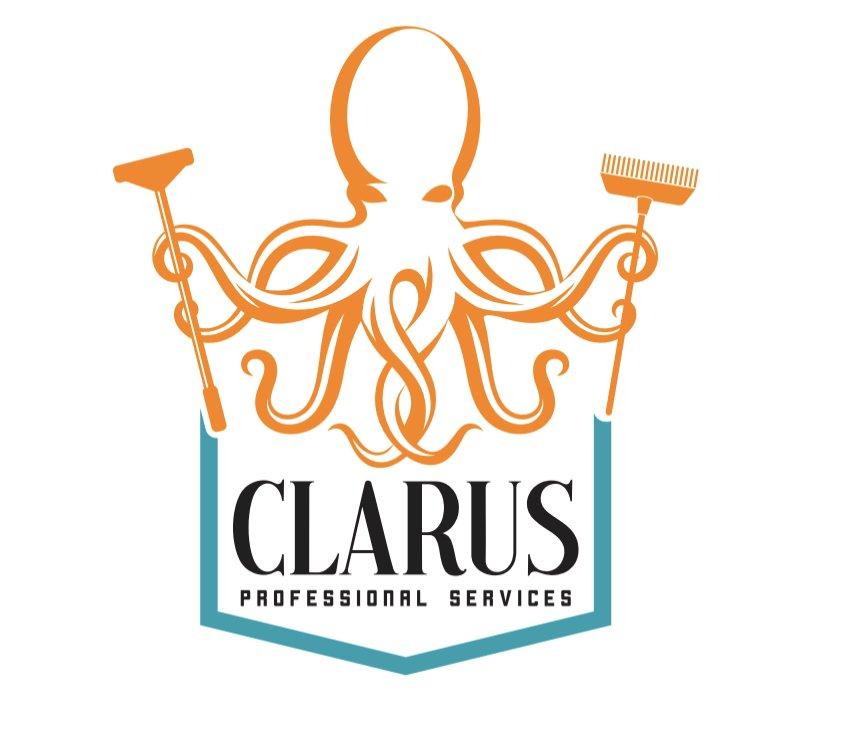 Clarus Cleaning: Palm Beach Gardens, FL