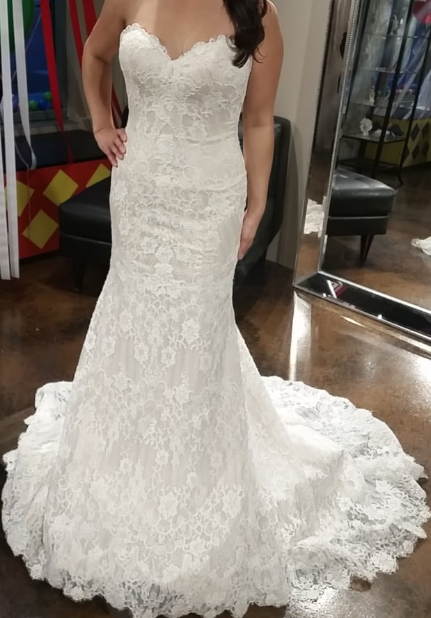 Photos For The White Flower Bridal Boutique