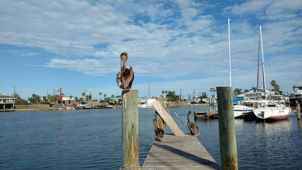Galveston hook up