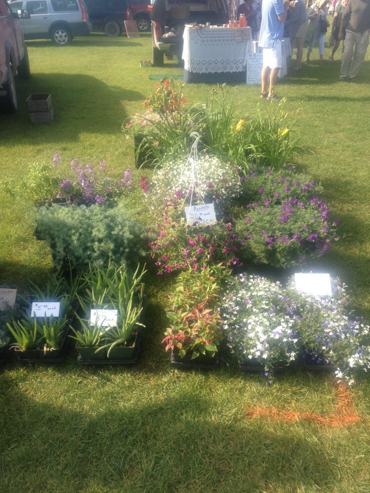 Boyne City Farmers Market: Veteran's Park, Boyne City, MI
