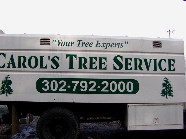 Carol's Tree Service: Wilmington, DE