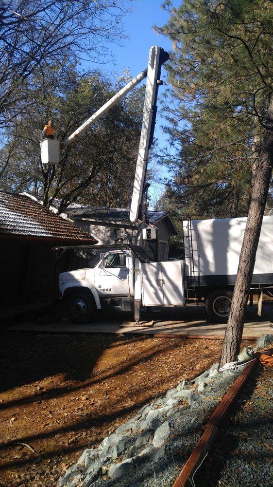 Ironwood Tree Service: 14173 Pepperwood Dr, Penn Valley, CA