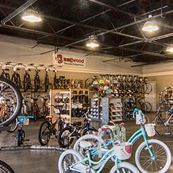 f4ca6ce3527 Carrollwood Bicycle Emporium - CLOSED - Bikes - 14425 N Dale Mabry ...