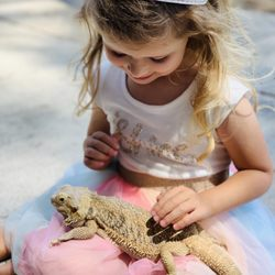 Puppies and Reptiles for Parties - (New) 72 Photos & 85 Reviews