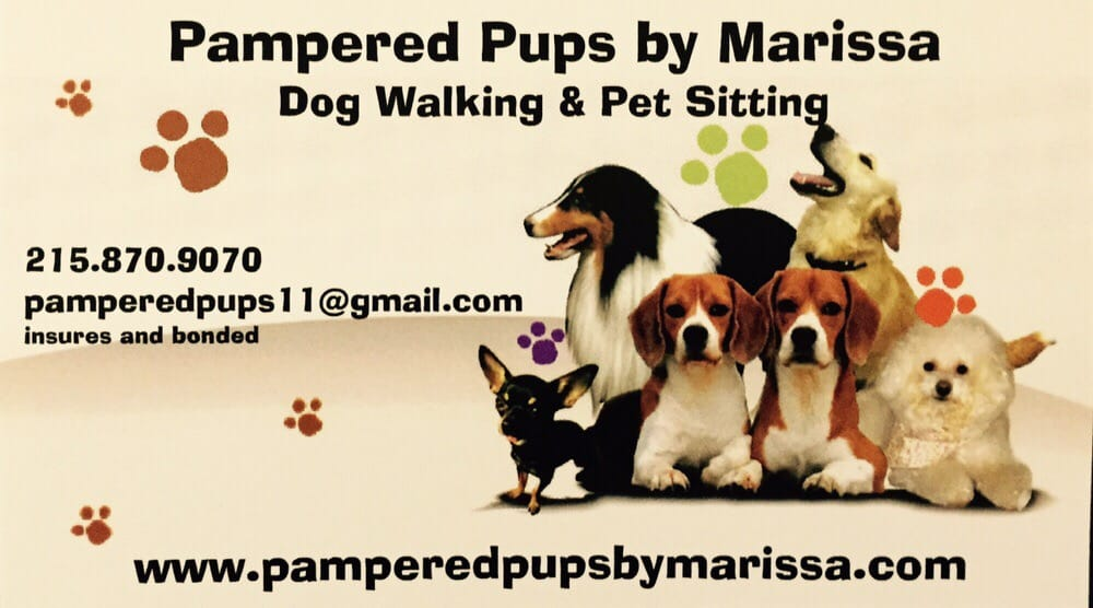 Pampered Pups By Marissa