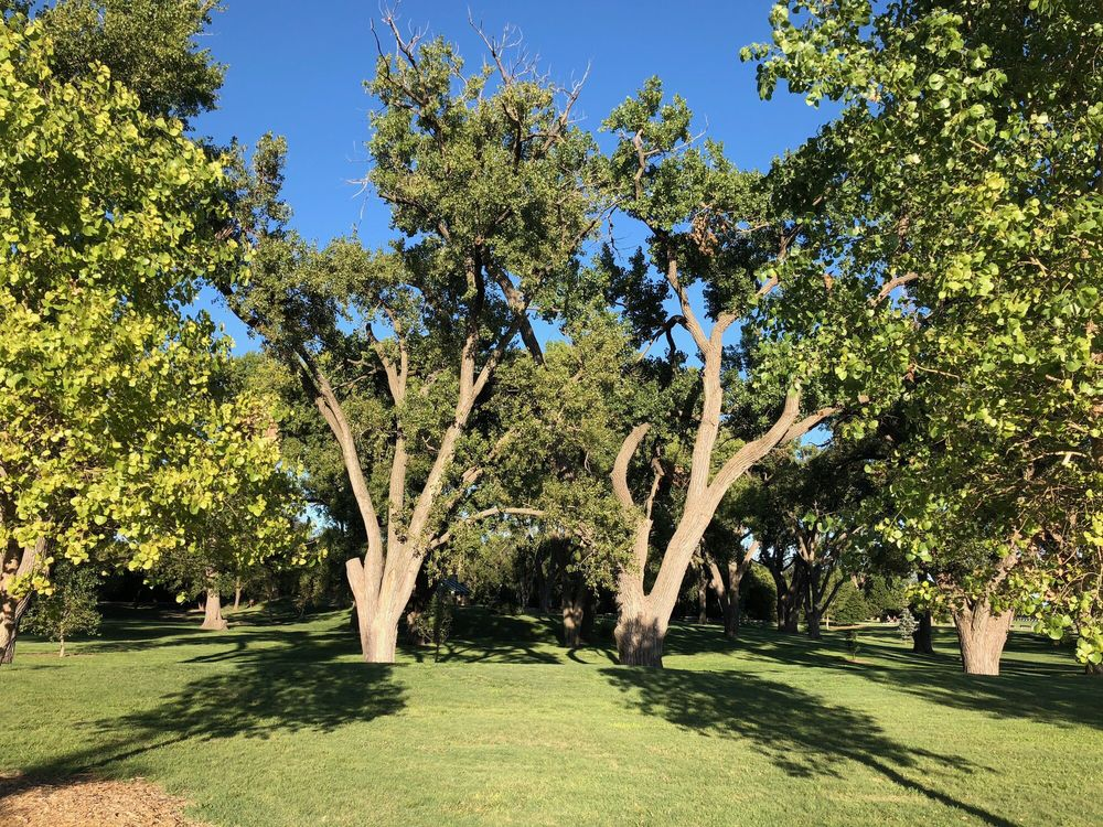 Frontier Park Disc Golf Course: Frontier Park, Hays, KS