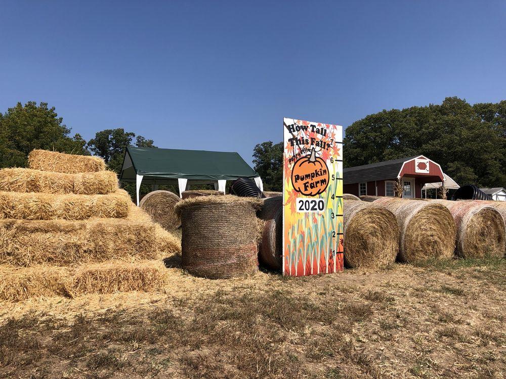 Perryville Pumpkin Farm: 1410 Allens Landing Rd, Perryville, MO
