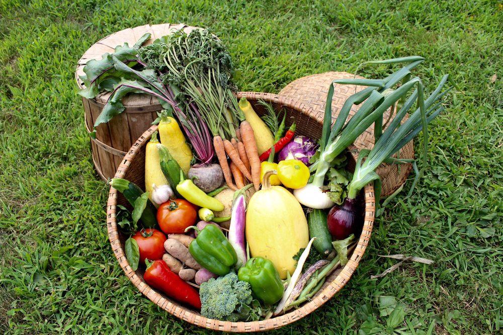 Winterberry Farm: 538 Augusta Road Rt 27, Belgrade, ME