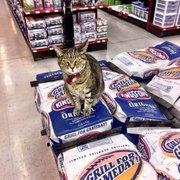 Diy home center 27 photos 59 reviews hardware stores 6300 plants photo of diy home center tujunga ca united states kitty told me solutioingenieria Gallery