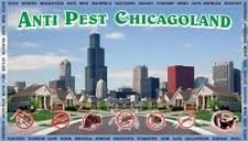 Anti Pest Chicagoland