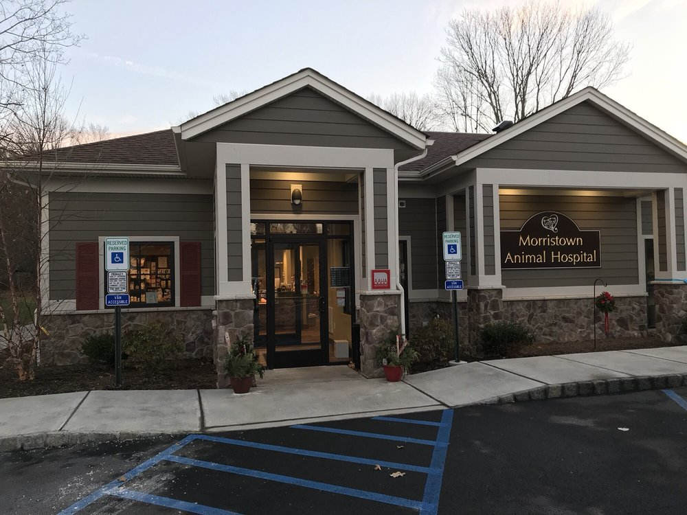 Morristown Animal Hospital