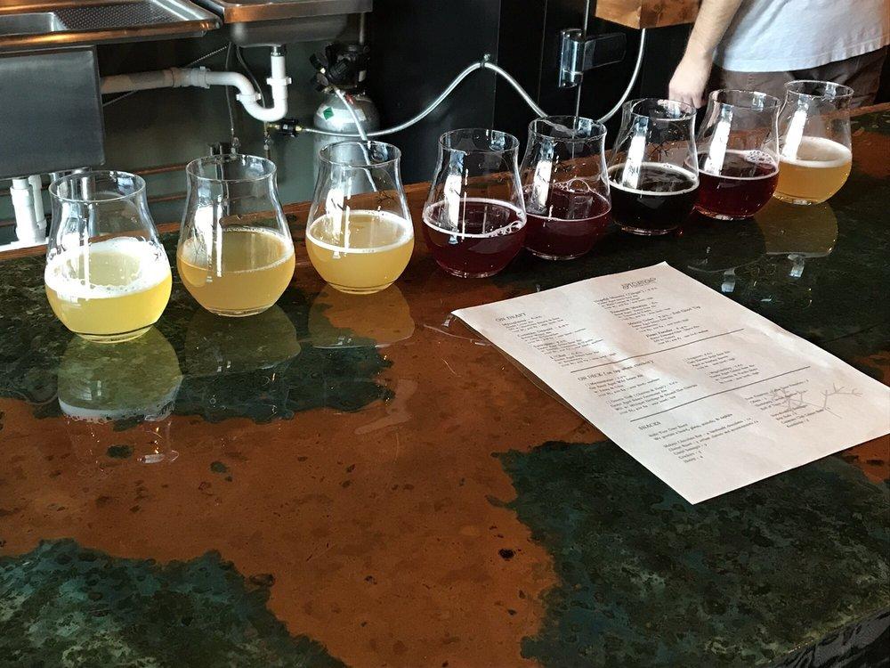 Photo of Speciation Artisan Ales: Comstock Park, MI