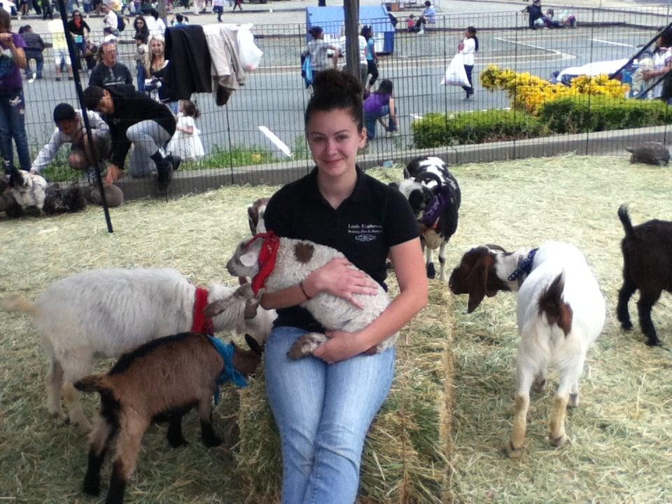 Petting Instead Press
