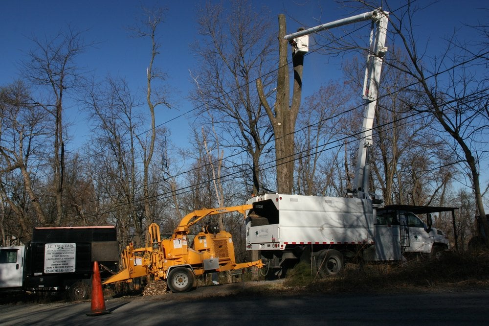JC Tree Care: 386 Ashby Station Rd, Front Royal, VA