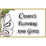 Candy's Flowers And Gifts: 101 N Main St, Onsted, MI