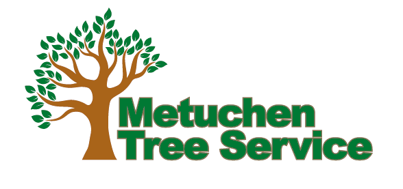 Metuchen Tree Service: 10 Station Pl, Metuchen, NJ