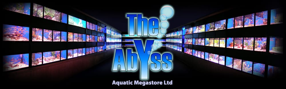 Abyss Aquatic Warehouse Gift Card - Stockport, XGM | Giftly