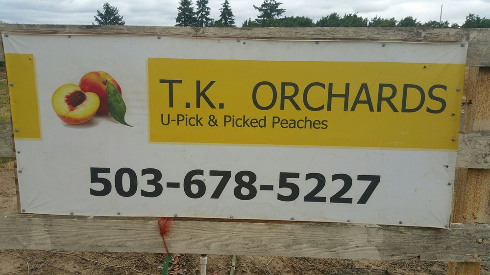 TK Orchards: 23513 NE Boones Ferry Rd, Aurora, OR