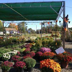 Photo Of Countryview Farm Nursery Monroe Township Nj United States