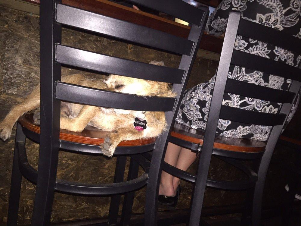 Underdogs Pub: 4212 Washington Ave, Houston, TX