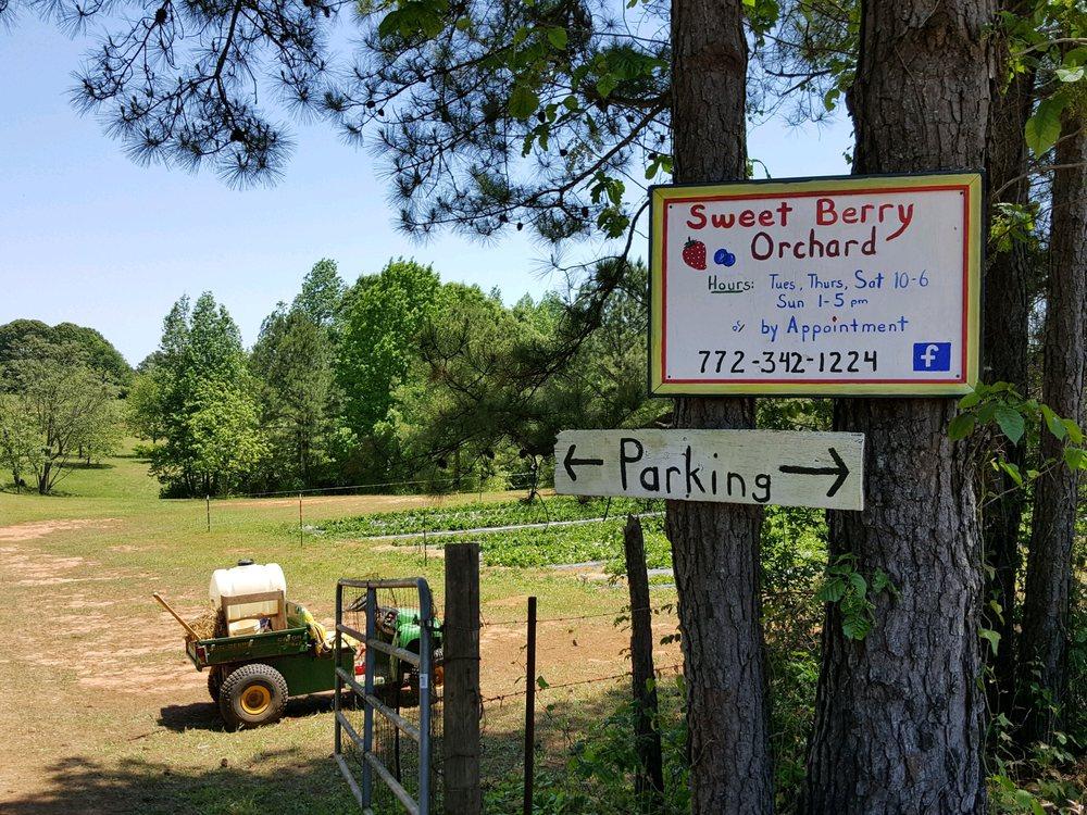 Sweet Berry Orchard: 6659 Lone Oak Rd, Hogansville, GA