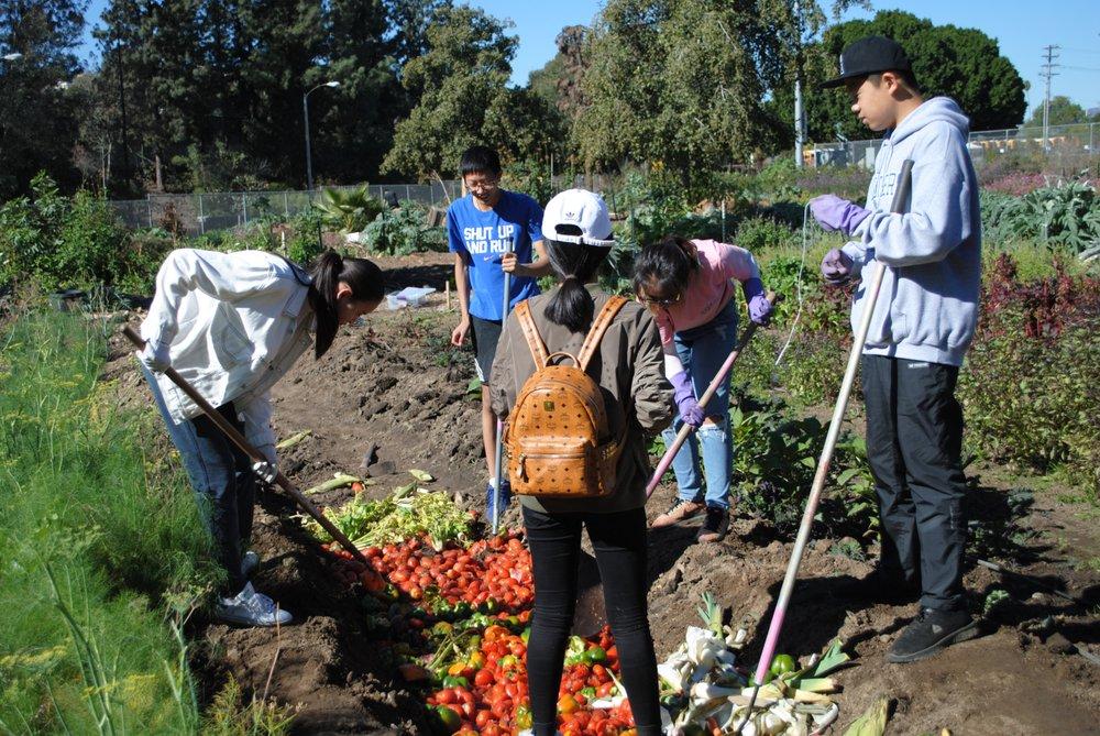 Mavin Learning Resources: 909 S Santa Anita Ave, Arcadia, CA