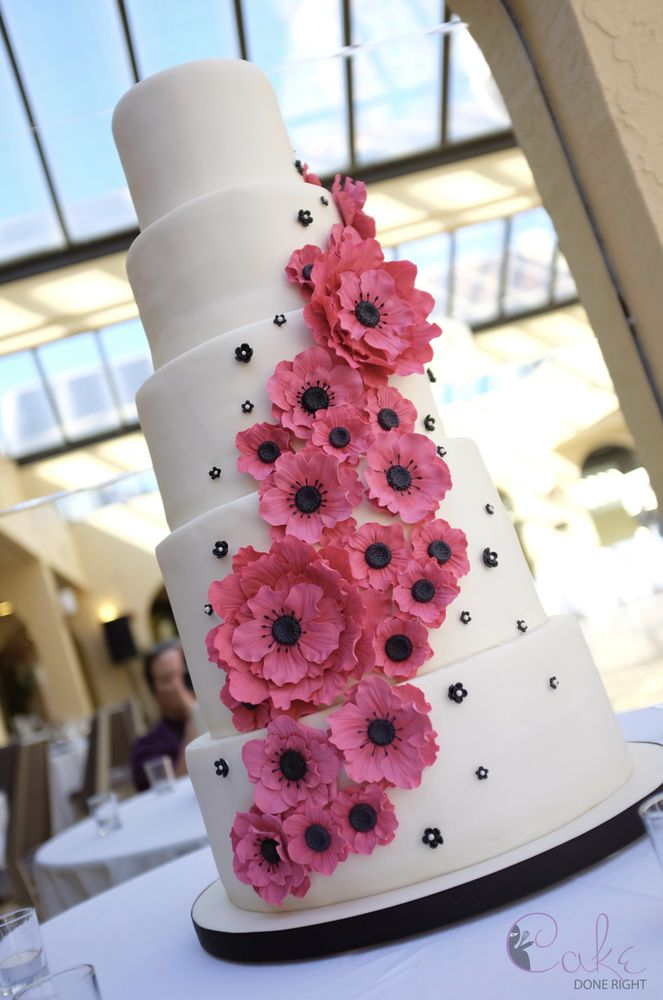 Black and white wedding cake with pink sugar flowers at the sheraton photo of cake done right redwood city ca united states black and mightylinksfo