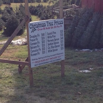 Nice Photo Of Davidson Tree Farm   Upperco, MD, United States. Price List 2014