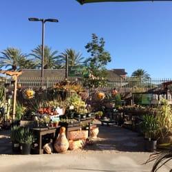 Armstrong Garden Centers 21 Photos 30 Reviews Nurseries