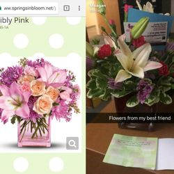 Springs In Bloom 11 Photos 12 Reviews Florists 318 E