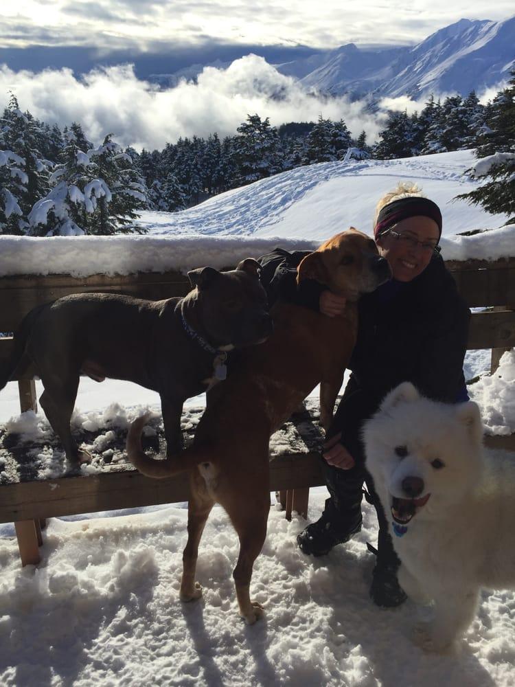 Seward Dog Lodge: 13888 Bruno Rd, Seward, AK