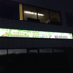 The Exotic Animal House - CLOSED - Pet Stores - 201