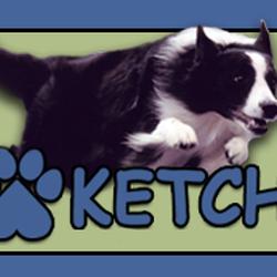 Ketch 10 Reviews Pet Sitting 7709 Gardner Rd Tampa Fl