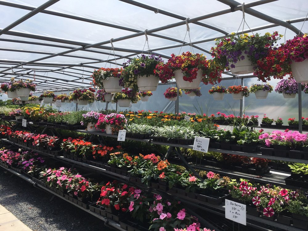 Wayside Produce: 900 Reading Rd, East Earl, PA