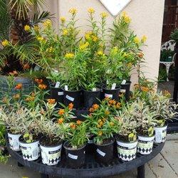 Attractive Photo Of Grangettos Farm And Garden Supply   Encinitas, CA, United States Great Ideas