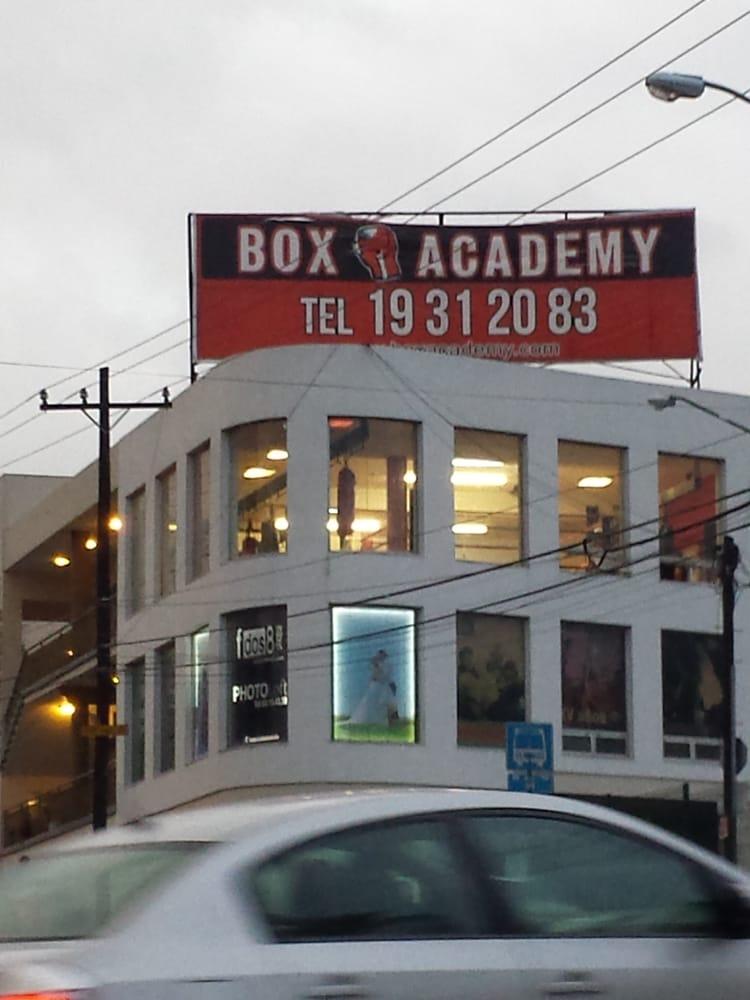 Box academy boxeo av puerta del sol 1009 monterrey for Telefono puerta del sol