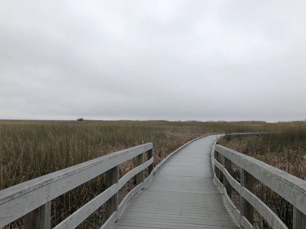 Wetland Walkway: Louisiana 27, Cameron, LA