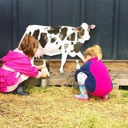 My Little Farmer - Specialty Schools - 1224 Old Lystra Rd, Chapel ...