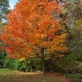 Photo Of Klehm Arboretum U0026 Botanic Garden   Rockford, IL, United States