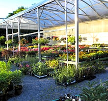 Pharo Garden Centre: 4505 Easton Ave, Bethlehem, PA