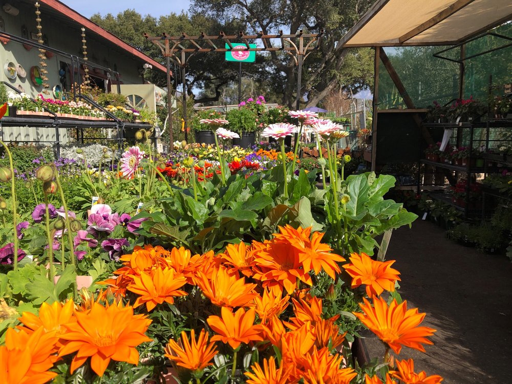 Flora Gardens: 245 Old Baldwin Rd, Ojai, CA