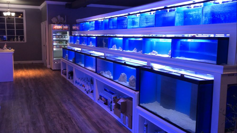 Tri State Aquarium Specialist: 525 N Barry Ave, Mamaroneck, NY
