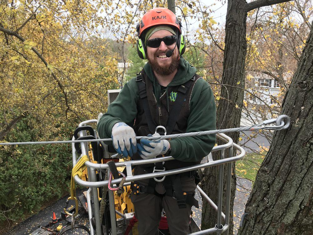 Wachtel Tree Science: N72 W28393 St Paul Ave, Merton, WI